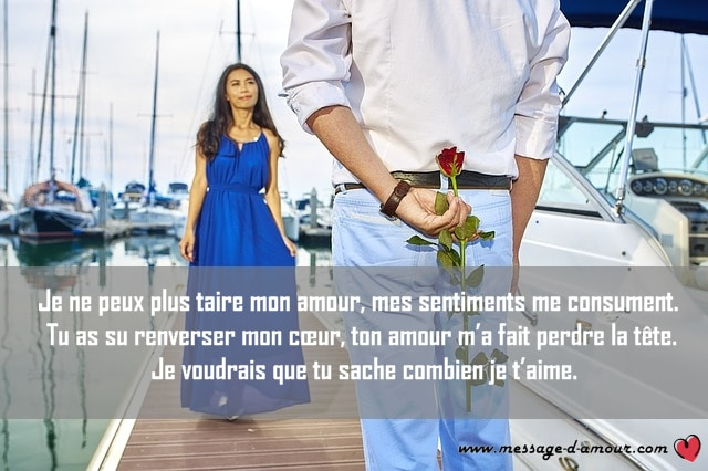 Faire Sa Déclaration Damour Par Sms Message Damour