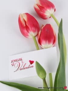Carte joyeuse saint valentin